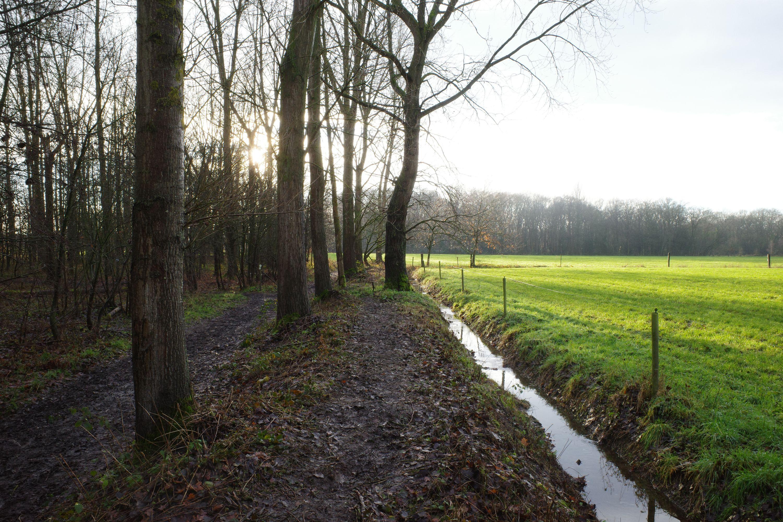 Bos- en Beemdenpad in Lint en Hove