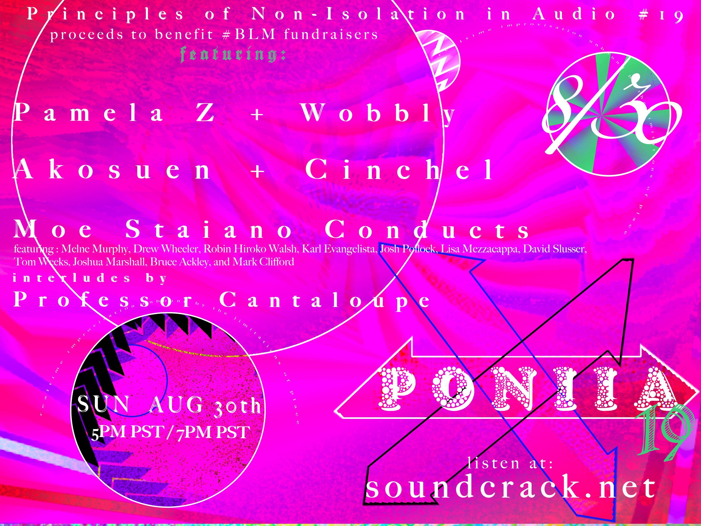 PONIIA 19 Flyer