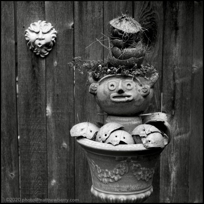 garden avatar