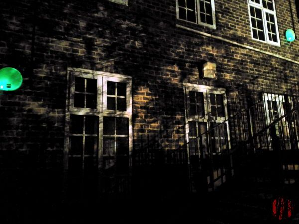 Very sharp shadow of a tree thrown on a dark brick wall by artificial light.