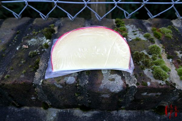 A wedge of Edam Cheese posed outside for the camera