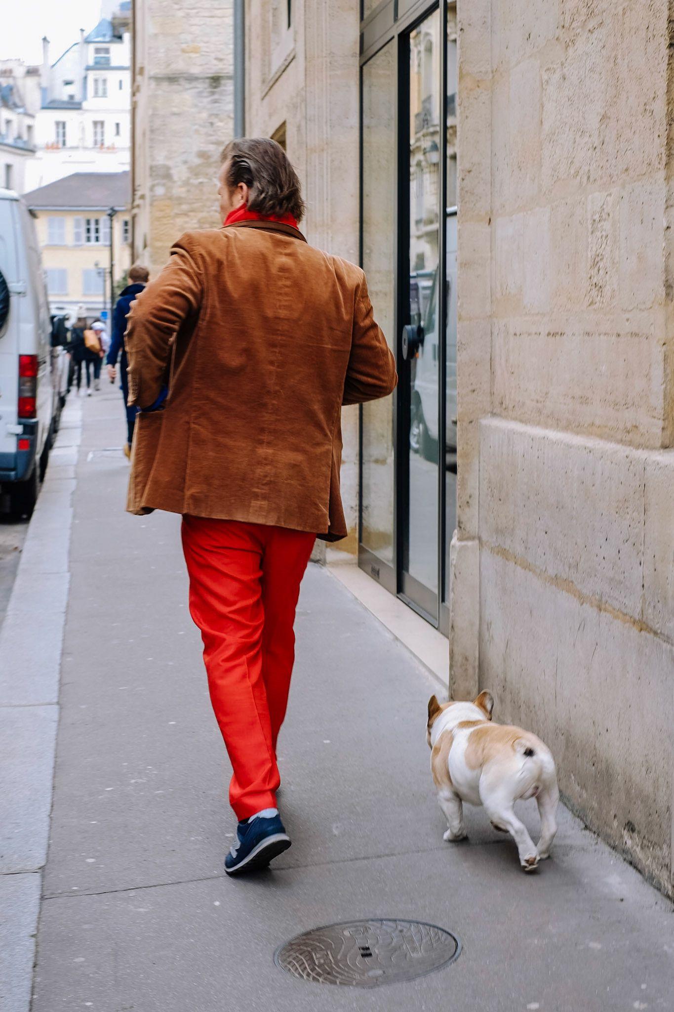 Parisian French bulldog and owner