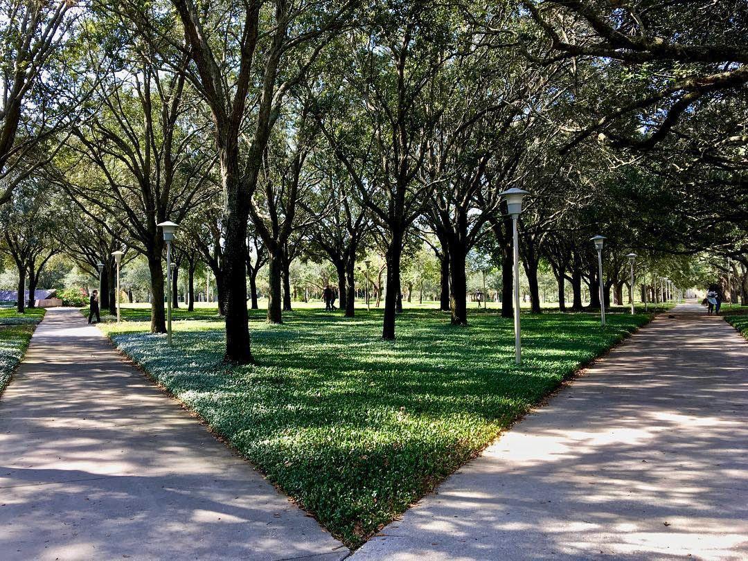 MLK Plaza Sidewalks