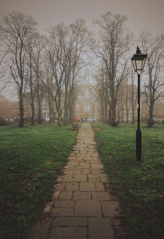 morning fog on central square