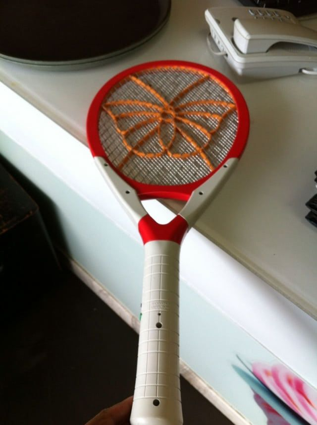 fly swatter