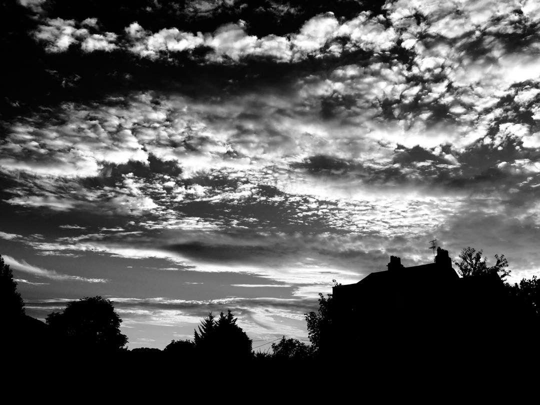 evening light 49002296611 o