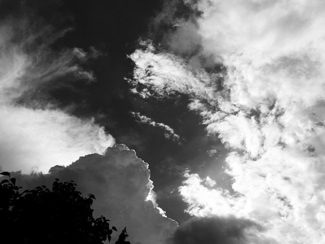 pre-storm sky 49002476692 o