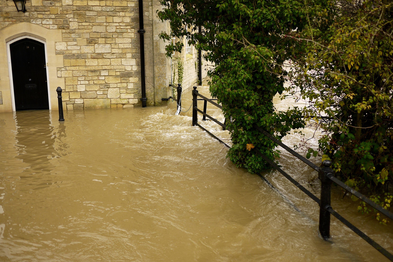 flood 8238744365 o