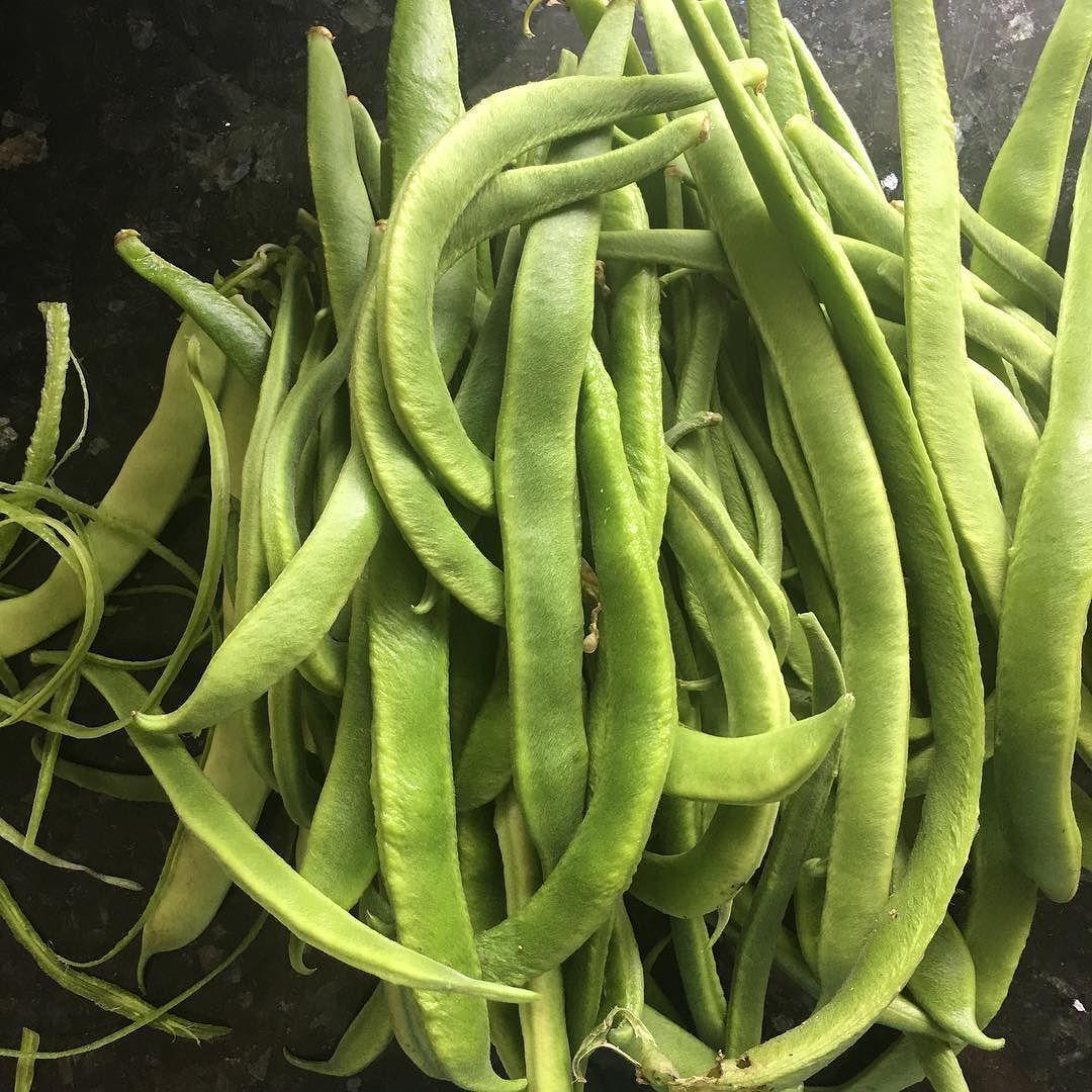 beans too 49002296041 o