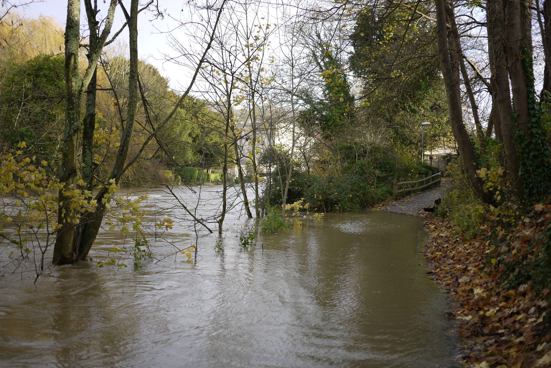 river-path 8207388475 o