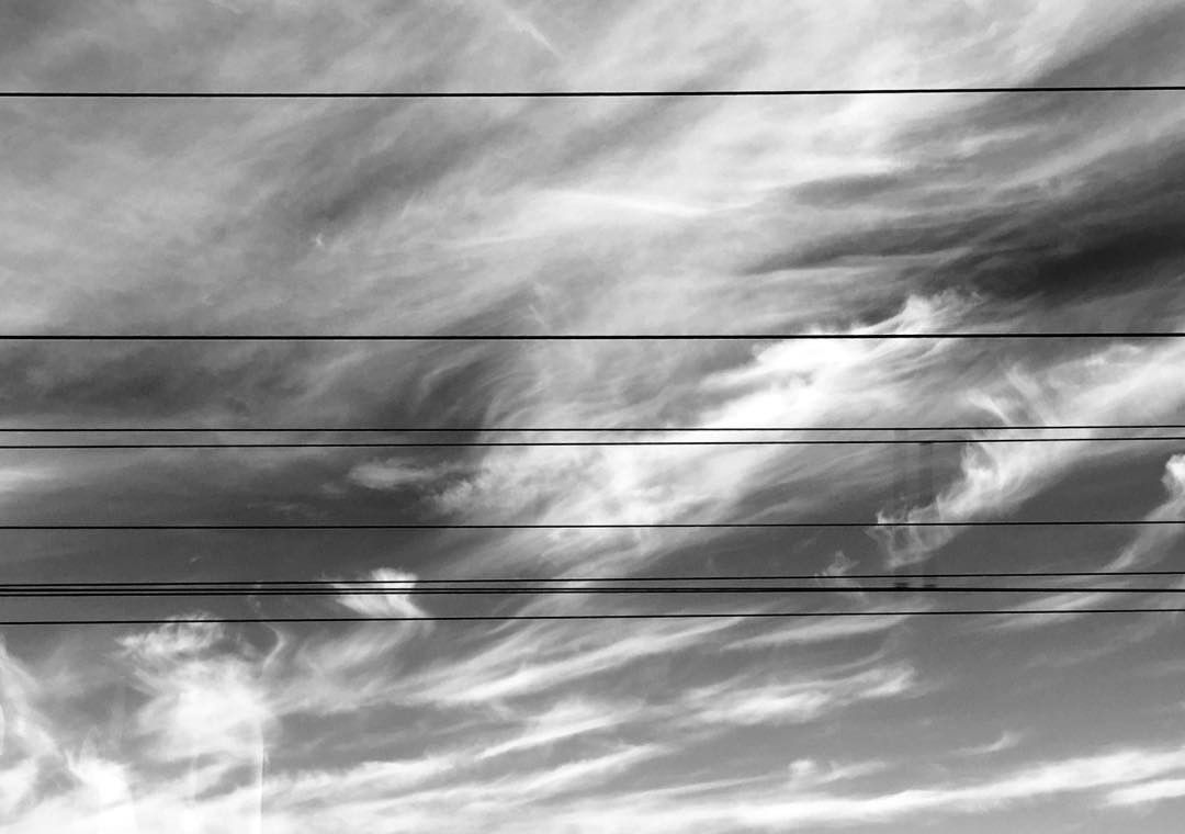 parallel lines 49001730738 o