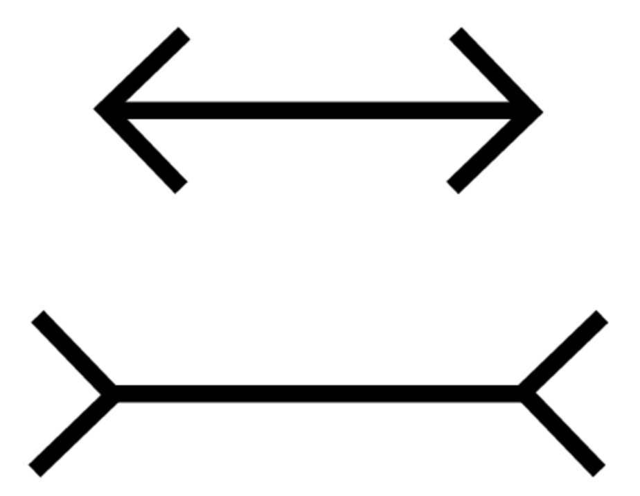 Muller Lyer Illusion